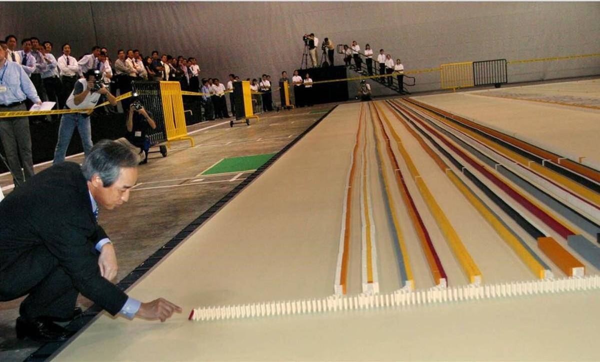 Mosca tira ficha de dominó y frusta récord mundial