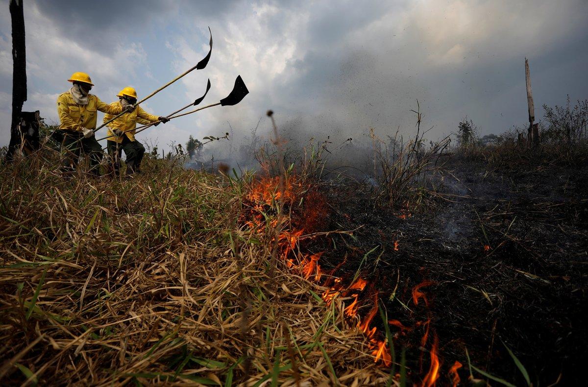 La Amazonía brasileña registró en agosto pasado 30.901 focos de incendios.