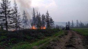 Incendio en un paraje de la República de Sajá, en Siberia Central.