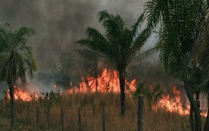 Incendios forestales en Bolivia.