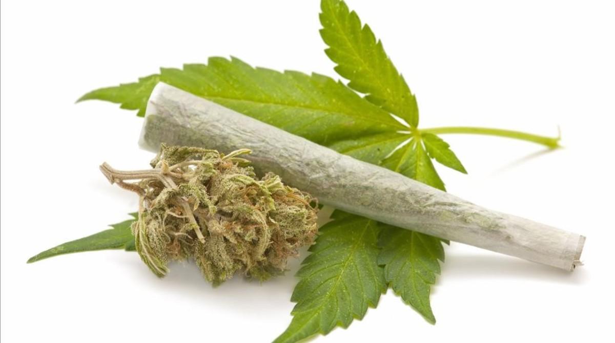 cjane33923175 marihuana cannabis porro foto agencia 123161030105704