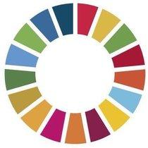 Logotipo de los Objetivos del Milenio de Naciones Unidas.