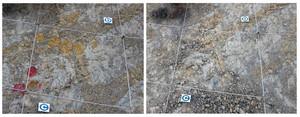 El jaciment museu dous de dinosaure de Coll de Nargó abans i després.