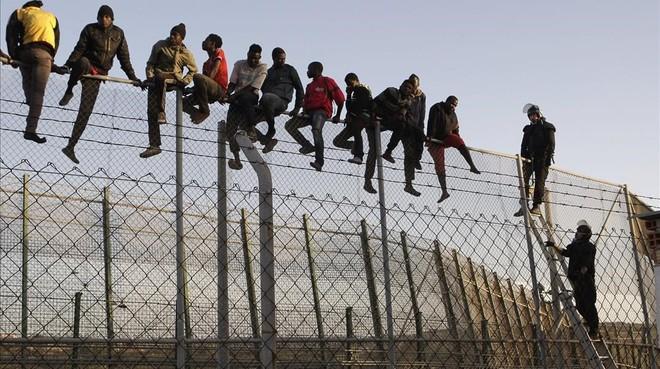 Policías españoles tratan de disuadir a inmigrantes encaramados a la valla de Melilla, fronteriza con Marruecos.