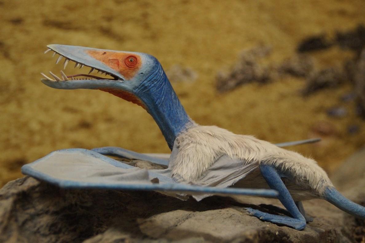 Reconstrucción virtual de un pterosaurio.