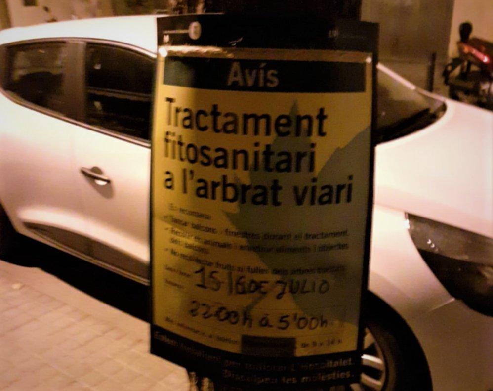 Tratamiento contra el escarabajo del olmo en L'Hospitalet.