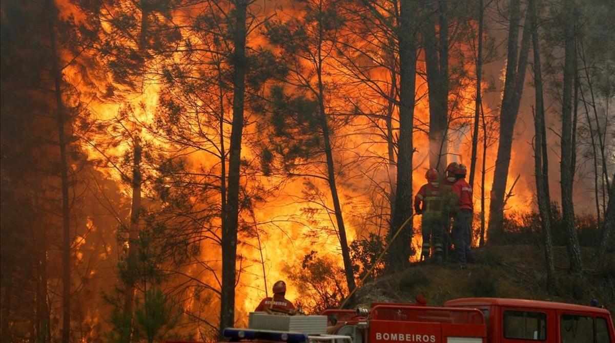 Unos bomberos tratan de sofocar el incendio que asoló la localidad de Capelo, en Portugal, el pasado junio.