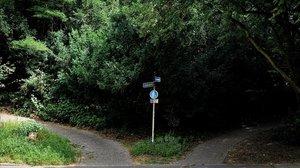 Commoció a Alemanya per una 'manada' infantil