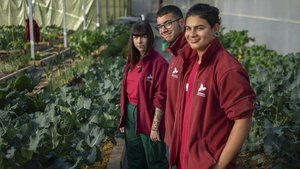 Sandra, Dídac y José Carlos, a finales de noviembreen el invernadero.