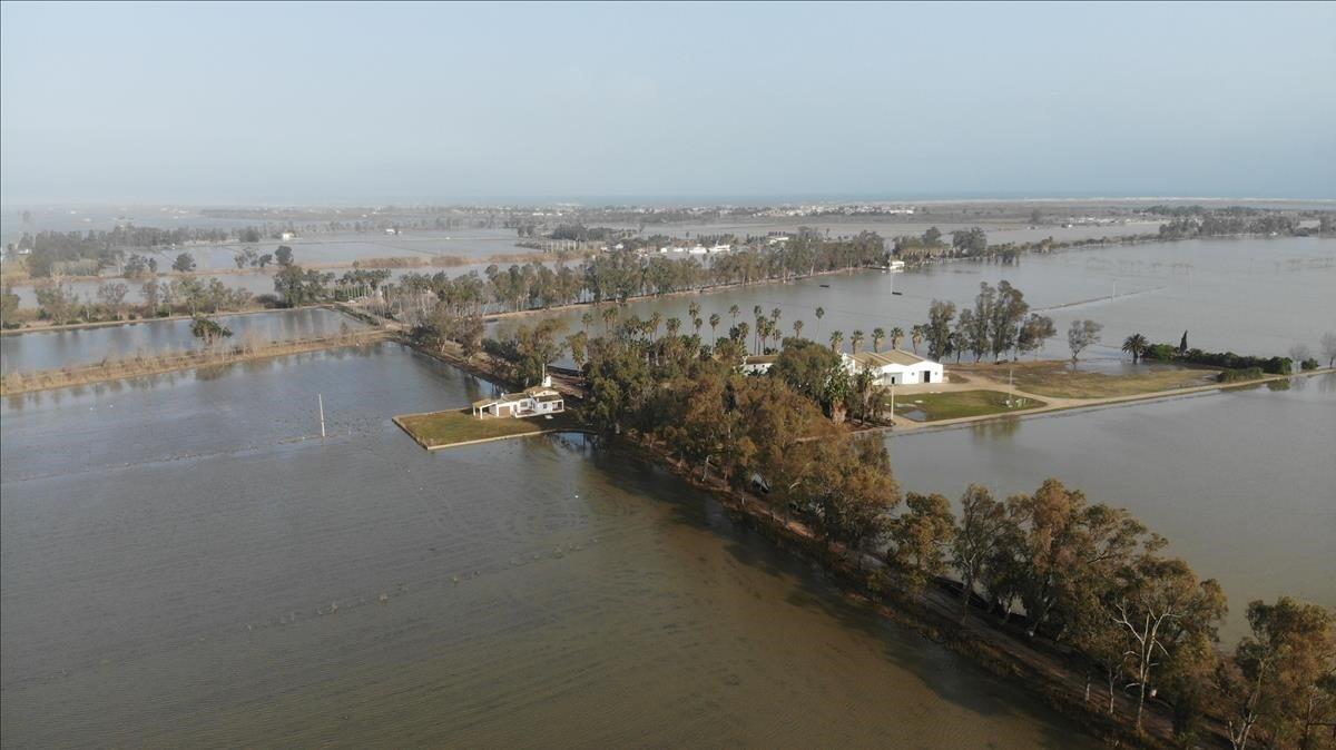 Una zona deldelta del Ebro totalmente inundada tras el paso de 'Gloria' cuando debería estar seca en estas épocas del años.