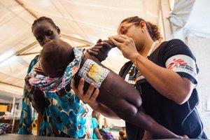 Los resultados han confirmado que la vacuna induce niveles considerables de anticuerpos.