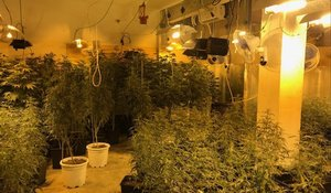 Local del barrio del Carmel dónde tenian la plantación de marihuana