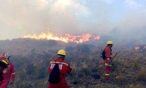En el control y extinción de este siniestro participaron brigadas de los bomberos voluntarios, el Ejército y la Policía Nacional.