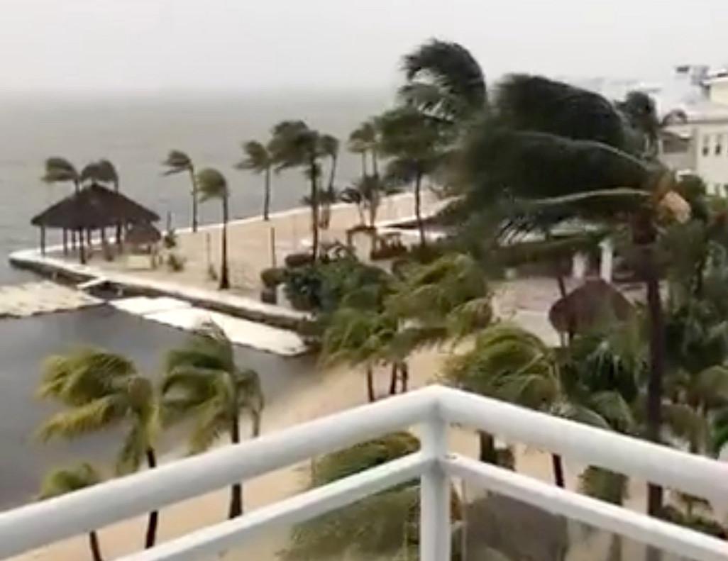 Palmeras balanceándose en Cayo Largo, Florida, como consecuencia del fuerte viento originado por el huracán 'Irma', en una imagen tomada del Facebook de Laura Kushner Gibson.