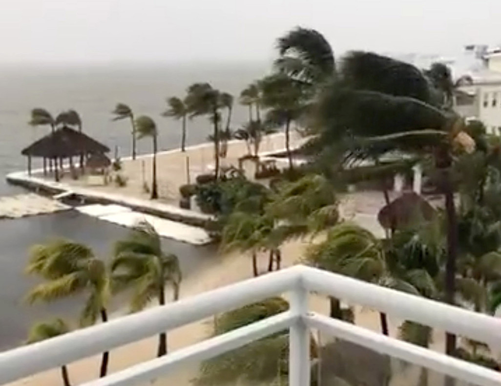 Palm trees sway as strong wind blows in Key Largo, Florida, U.S., September 9, 2017, in this still image taken from a video obtained from social media. Picture taken September 9, 2017. Facebook/Laura Kushner Gibson/via REUTERS THIS IMAGE HAS BEEN SUPPLIED BY A THIRD PARTY. MANDATORY CREDIT. NO RESALES. NO ARCHIVES