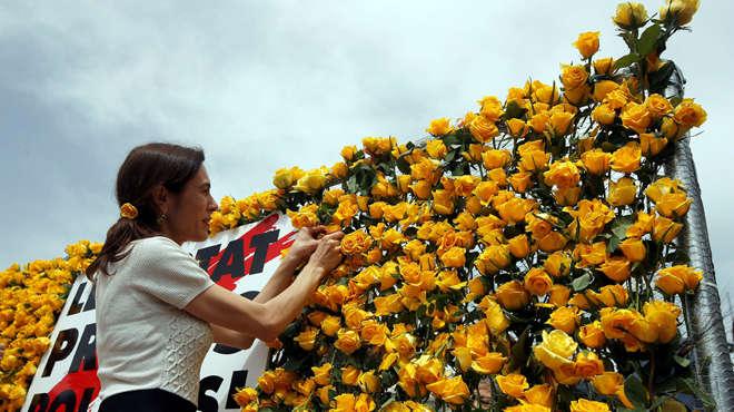 Un Sant Jordi de rosas amarillas para reivindicar la libertad de los políticos presos.