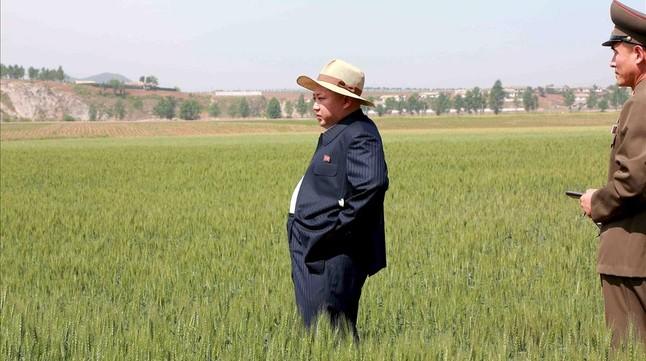 El dictador Kim Jong Un comprueba los efectos de la sequía.