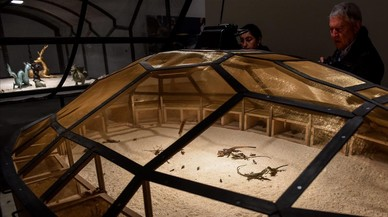 El arte radical chino que escandaliza a los animalistas toma el Guggenheim