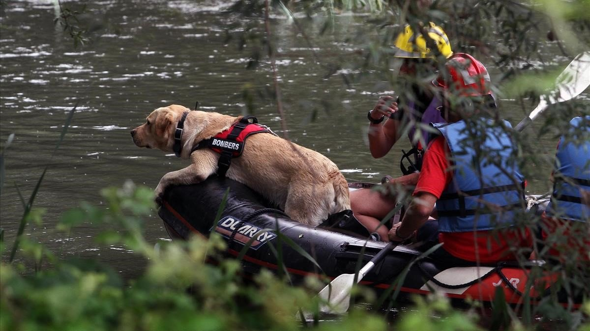 Busqueda de Irene Rigall en el río Ter, en el 2011.
