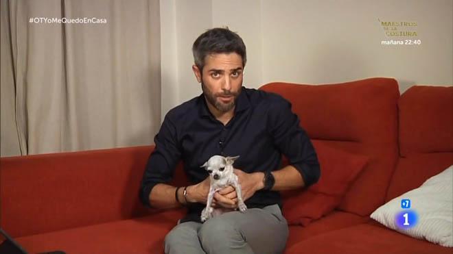 Roberto Leal y su chihuahua ('OT', TVE-1).
