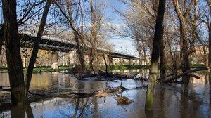 El Ebro a su paso por Logroño.