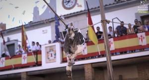 """El fil que recopila les tradicions """"més vergonyoses"""" amb animals"""