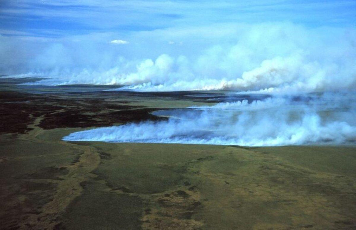 Los 'incendios zombis' son la nueva alarma climática