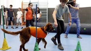 Terapia con perros en la Escuela Lleó XIII de Barcelona
