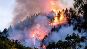 Una imagen del fuego que afecta al municipio de Valleseco, en Gran Canaria.