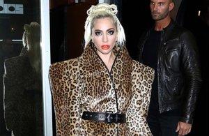 Ponte el leopardo y ruge