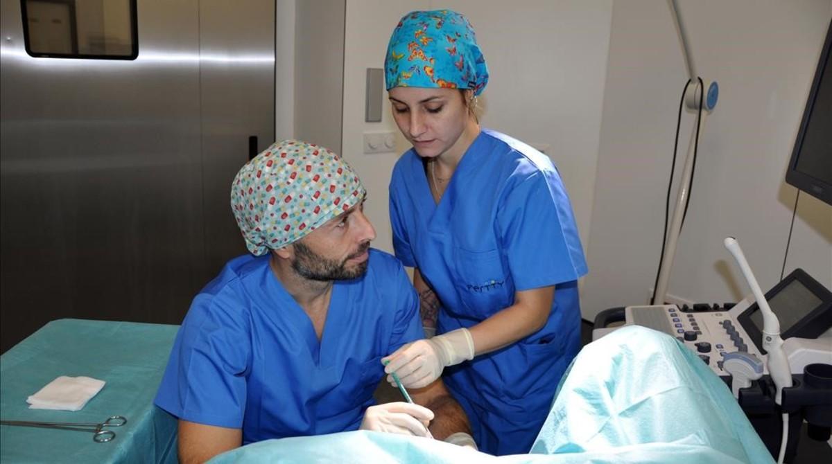 La bióloga Aida Casanovas y el doctorMiguel Ángel Checa, en el proceso de transmisión de embriones.