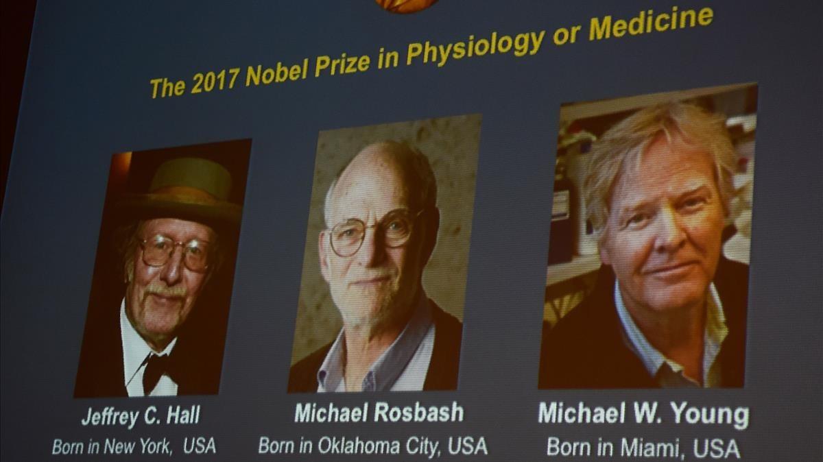 Nobel de Medicina para los descubridores del 'reloj biológico'