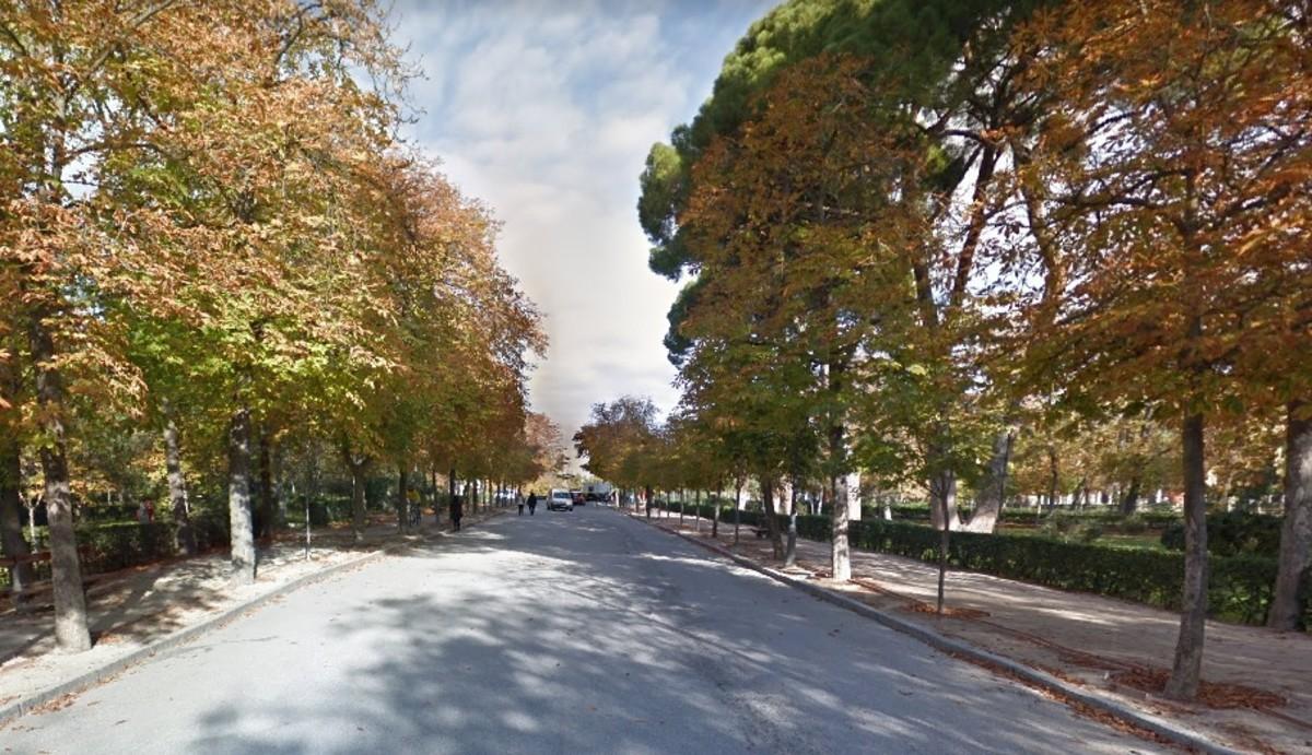 Interior del parque de El Retiro, en Madrid.