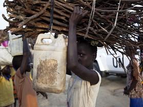 Una niña transporta leña en Sudán del Sur.