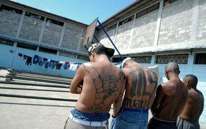 Miembros de la pandilla salvadoreña Mara Salvatrucha MS-13.