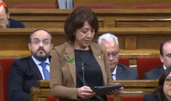 Una diputada de JxCat demana posar fi al «costum» de parlar en castellà a qui «no sembli català»