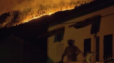 Las llamas han arrasado casas y bosques enteros.