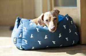 Ocho camas para un descanso animal