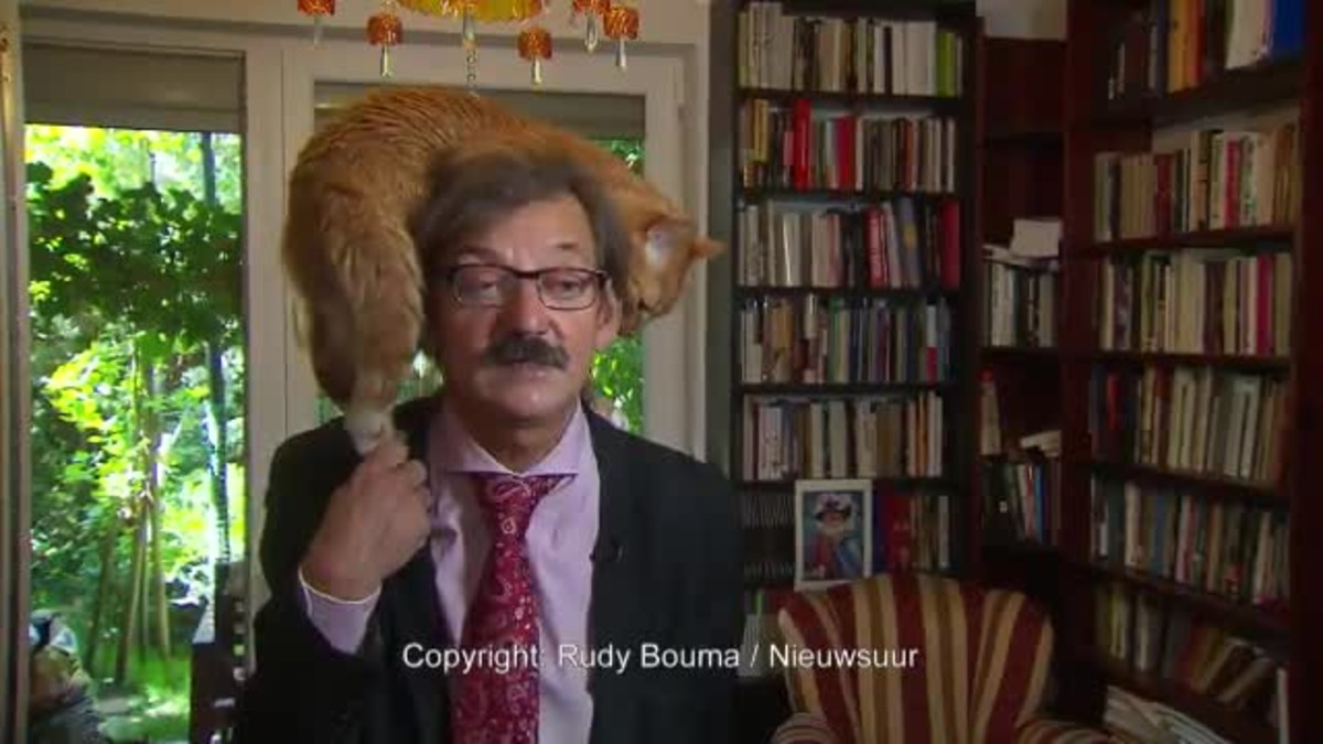 Momento en que un gato irrumpe en plena entrevista de un politólogo polaco.