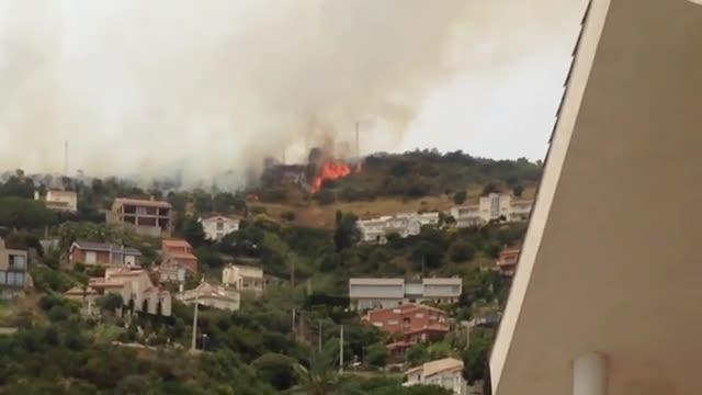 Incendi forestal a Collserola.