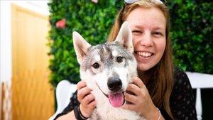 Una clienta disfrutade la compañía canina en Husky House.