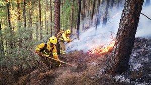 Gran Canària aconsegueix contenir un incendi que ha devorat gairebé mil hectàrees