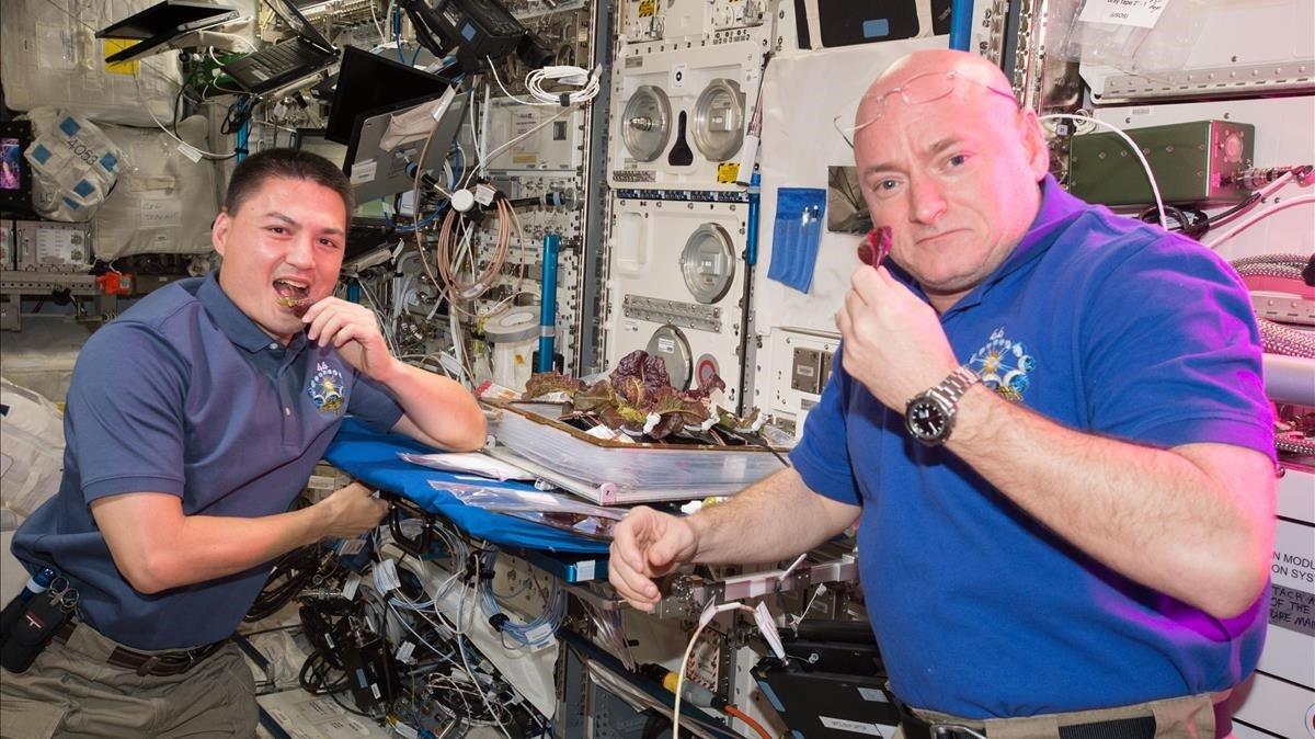 Los astronautas Scott Kelly y Kjell Lindgren disfrutan de unos brotes de lechuga espacial a bordo de la Estación Espacial Internacional, en una imagen de archivo del 2014