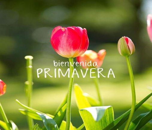 imagen primavera