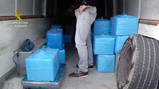 A los doce arrestados se les han intervenido un subfusil, numerosa munición, un chaleco antibalas y casi 190.000 euros.