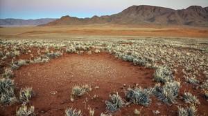 Formaciones de círculos de las hadas en el desierto de Namibia.