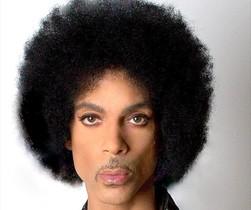 Prince, en su pasaporte.