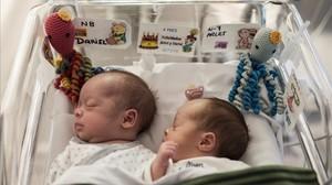 Dariel y Arlet, con sus pulpitos, en la unidad de bebes prematuros del Hospital de Dexeus.