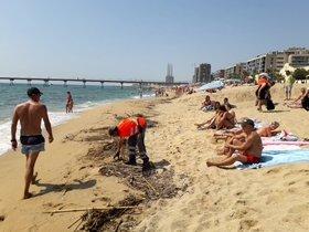El AMB reforzó el servicio de limpieza del litoral badalonés durante el pasado fin de semana.