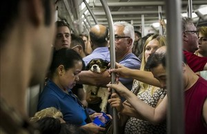 Tots els trens del metro de Barcelona tindran càmeres de seguretat